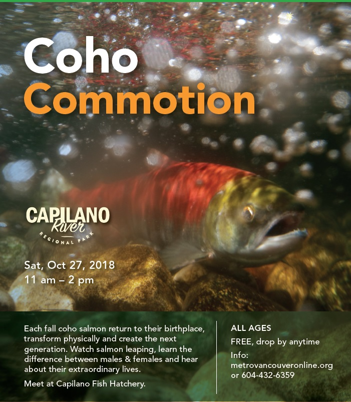 coho-commotion-poster