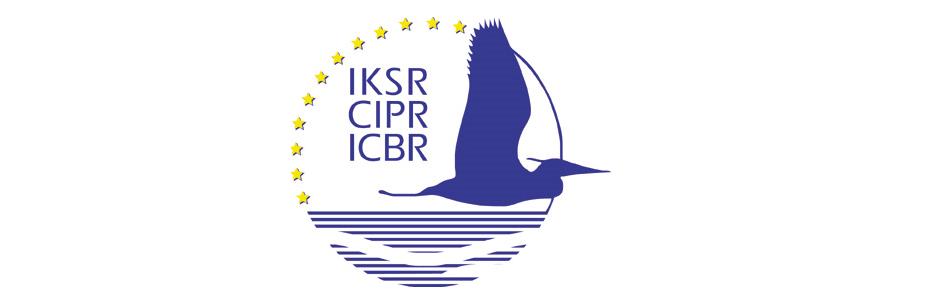 icpr_1